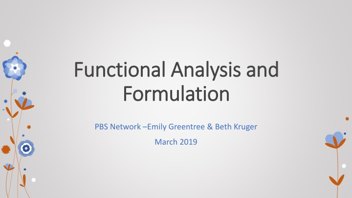 functional analysis and formulation n.