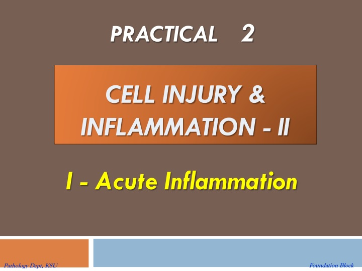 cell injury inflammation ii n.