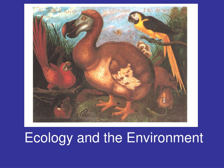 ecology and the environment n.