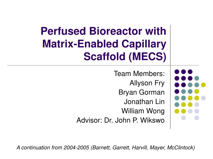 perfused bioreactor with matrix enabled capillary scaffold mecs n.