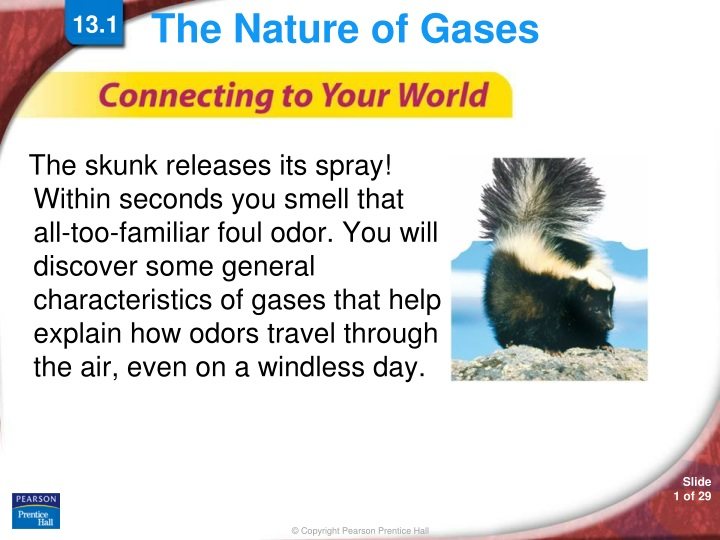 the nature of gases n.