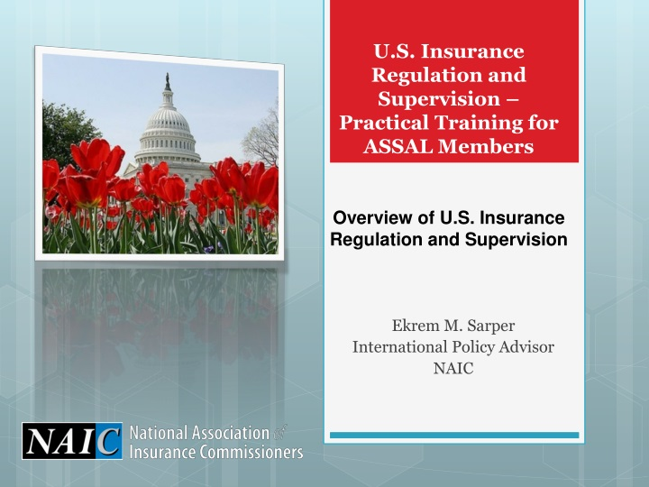 u s insurance regulation and supervision practical training for assal members n.