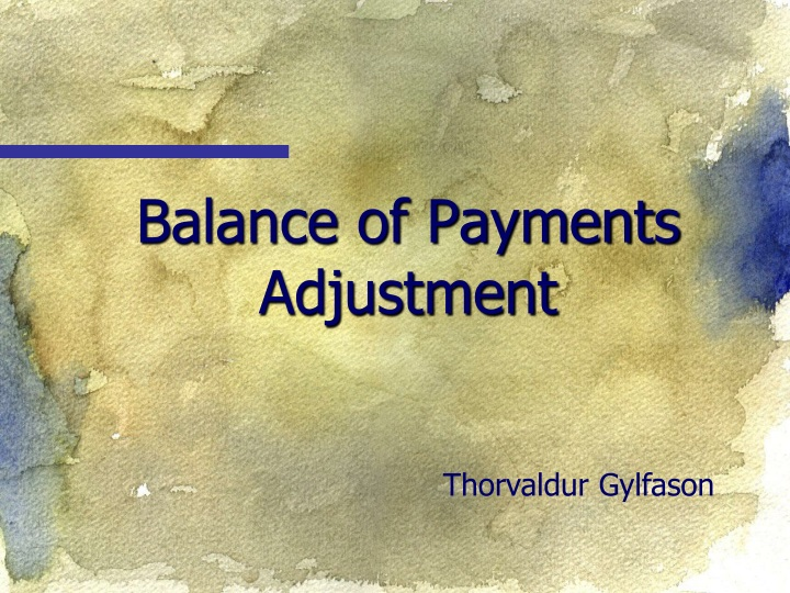 balance of payments adjustment n.