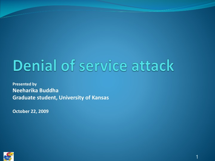 denial of service attack n.
