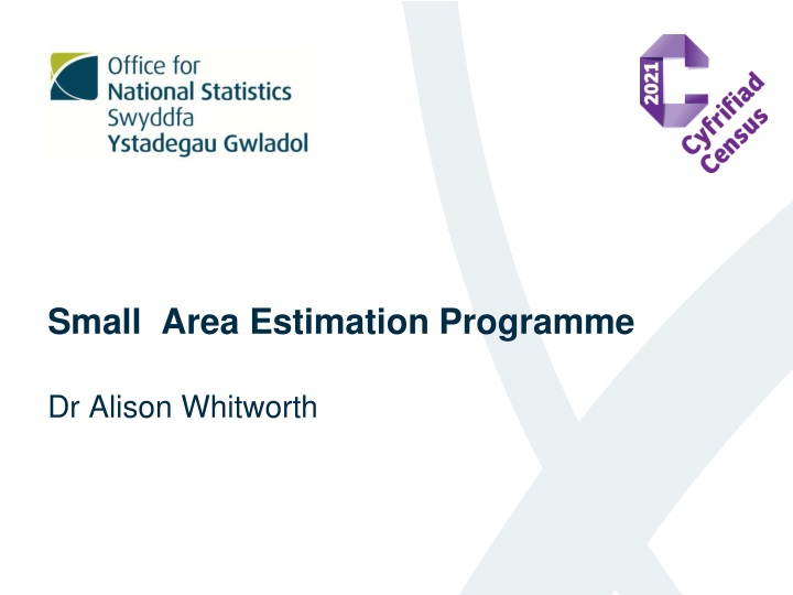small area estimation programme n.