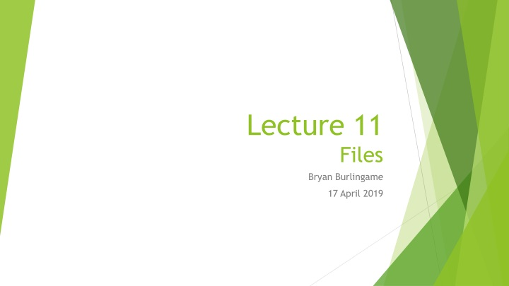 lecture 11 files n.