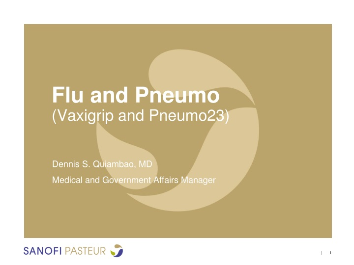 flu and pneumo vaxigrip and pneumo23 n.