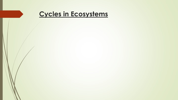 cycles in ecosystems n.