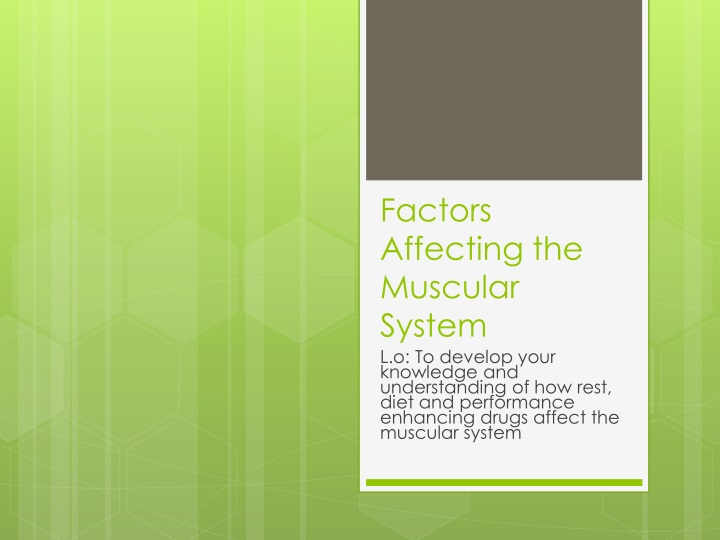 factors affecting the muscular system n.