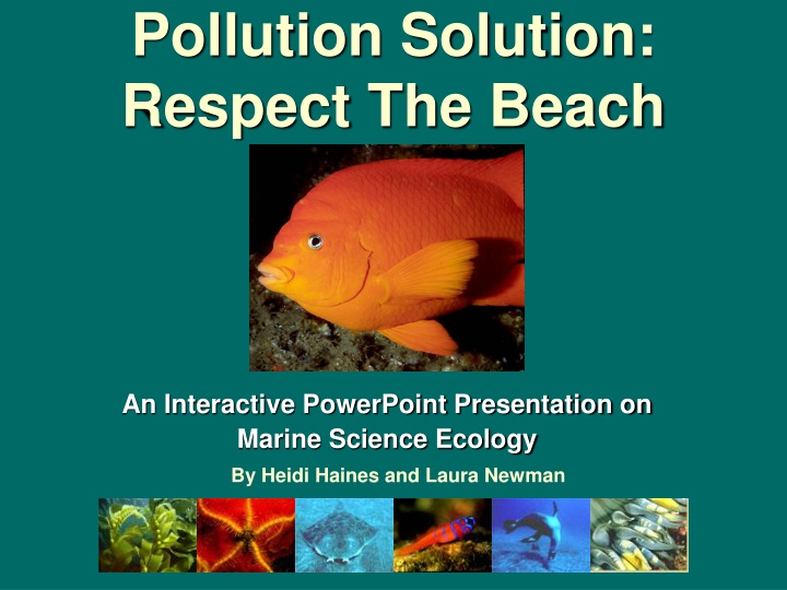 pollution solution respect the beach n.