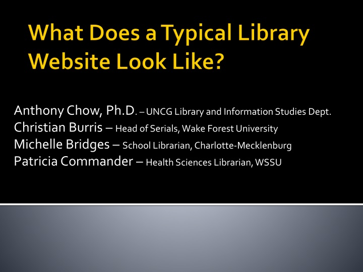what does a typical library website look like n.