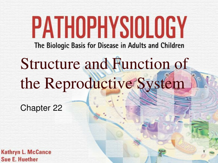 structure and function of the reproductive system n.
