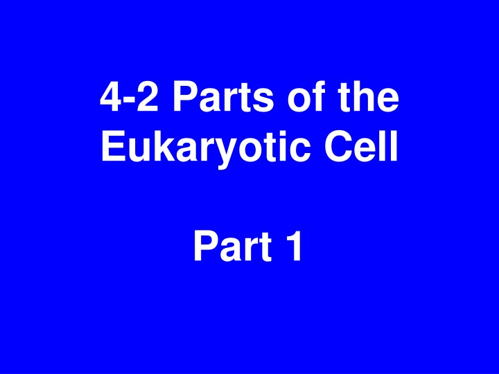4 2 parts of the eukaryotic cell part 1 n.