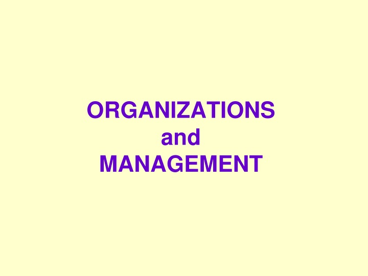 organizations and management n.