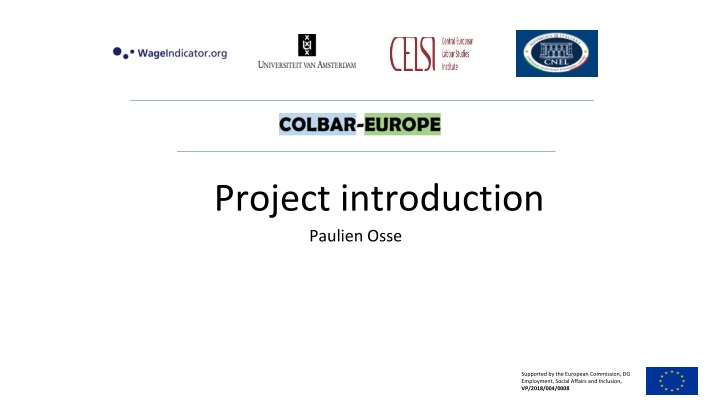 project introduction n.