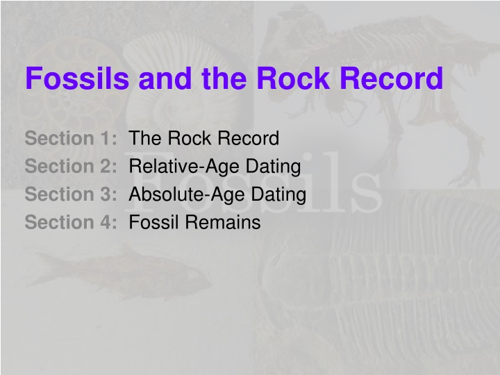 fossils and the rock record n.