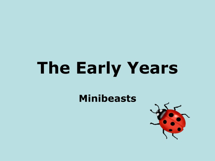 the early years n.