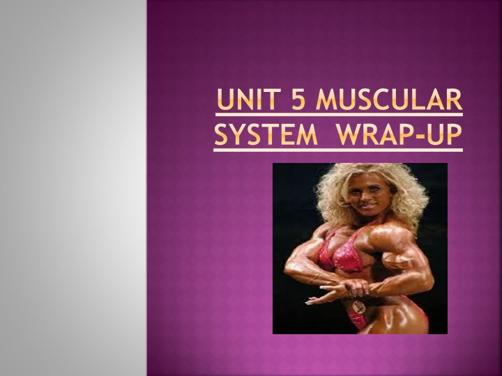 unit 5 muscular system wrap up n.