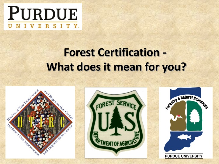 forest certification what does it mean for you n.