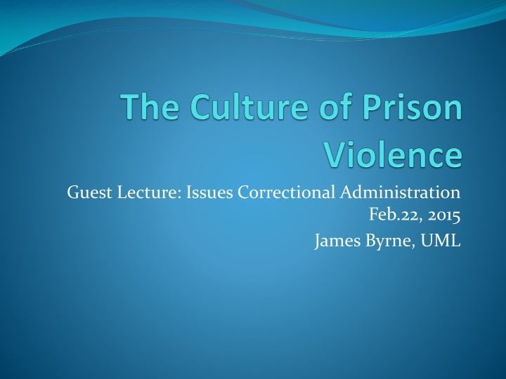 the culture of prison violence n.