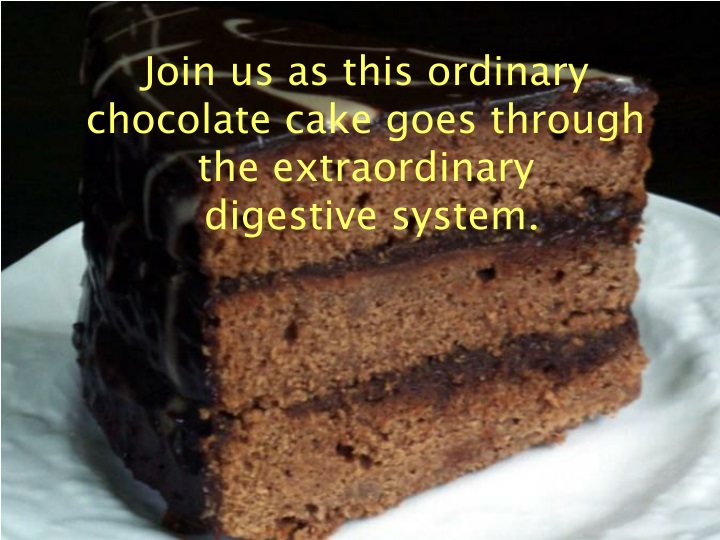 join us as this ordinary chocolate cake goes n.