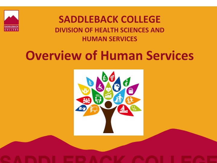 saddleback college division of health sciences and human services n.