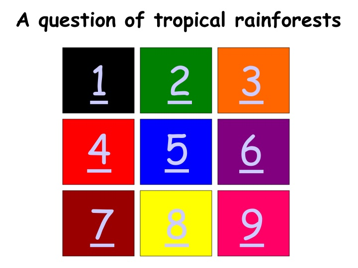 a question of tropical rainforests n.