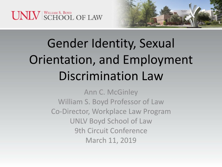 gender identity sexual orientation and employment discrimination law n.