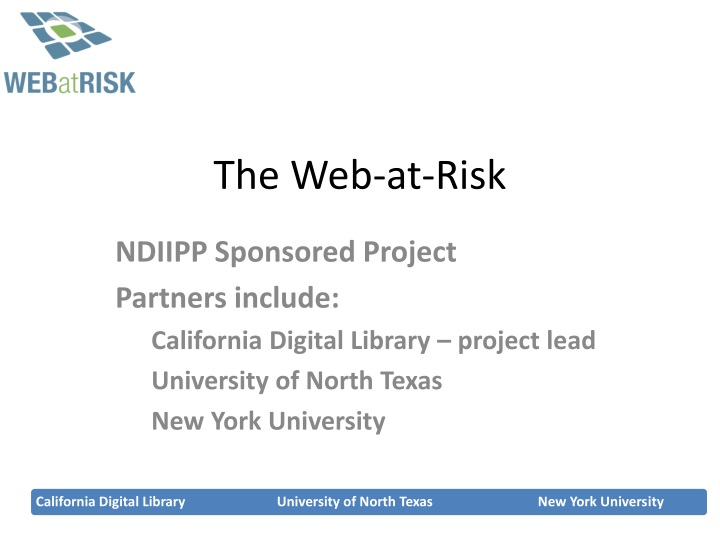 the web at risk n.