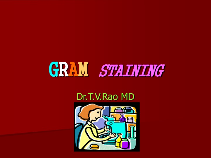 g r a m staining n.