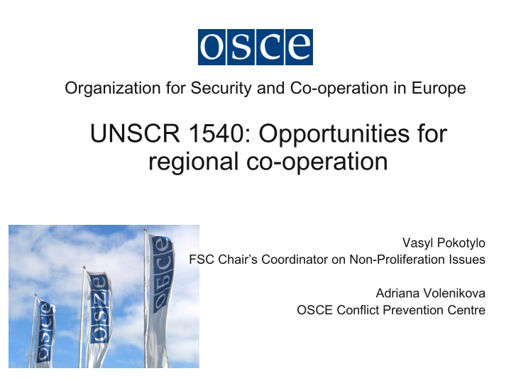 organization for security and co operation in europe n.