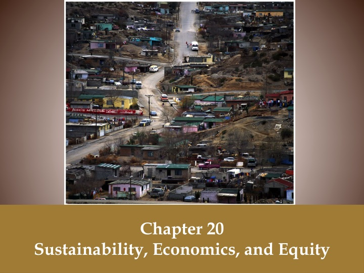 chapter 20 sustainability economics and equity n.