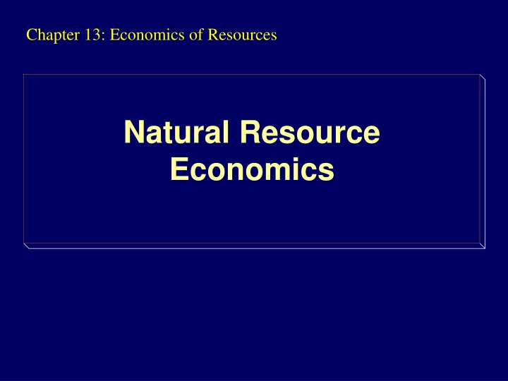 chapter 13 economics of resources n.