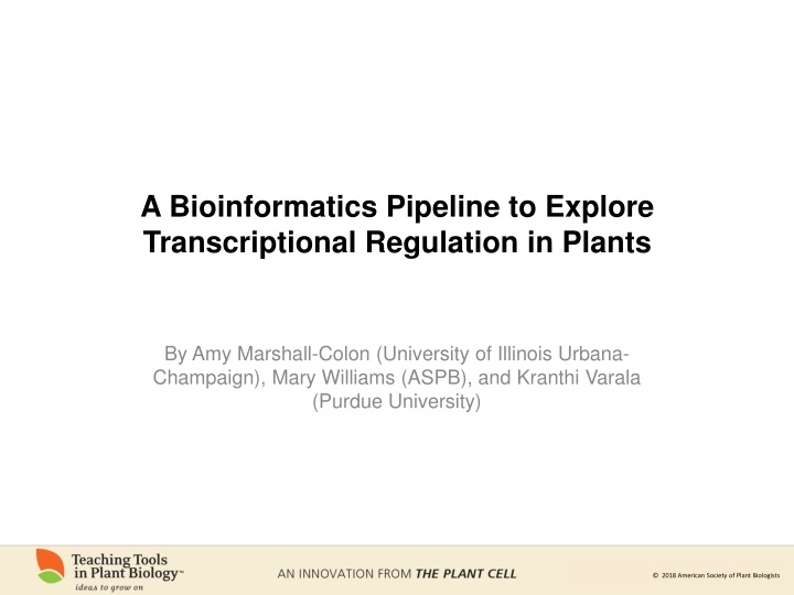 a bioinformatics pipeline to explore transcriptional regulation in plants n.