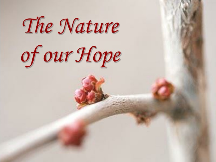 the nature of our hope n.