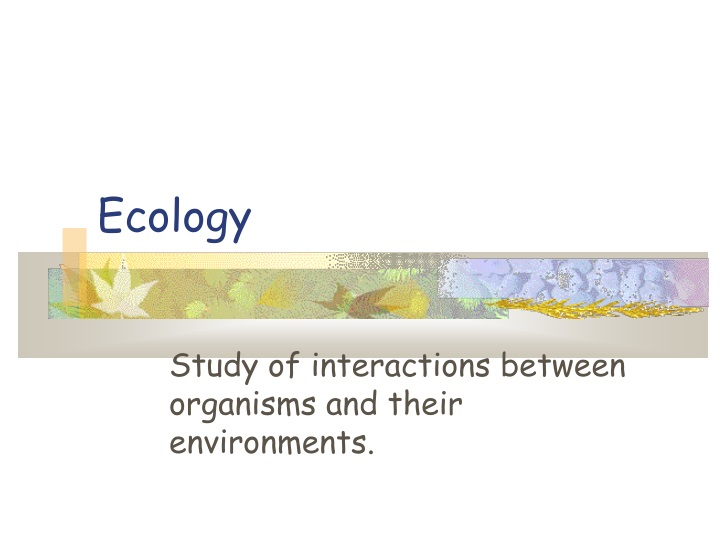 study of interactions between organisms and their environments n.