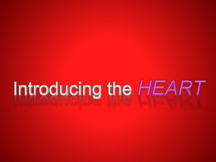 introducing the heart n.