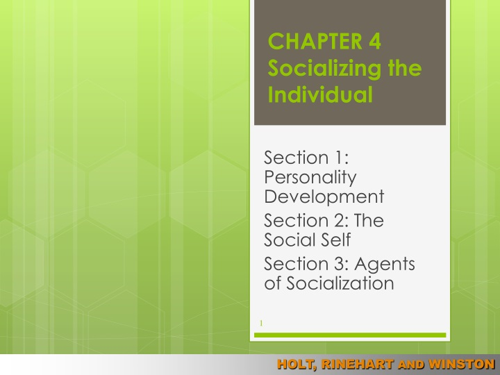 chapter 4 socializing the individual n.