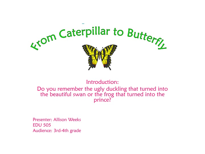 from caterpillar to butterfly n.