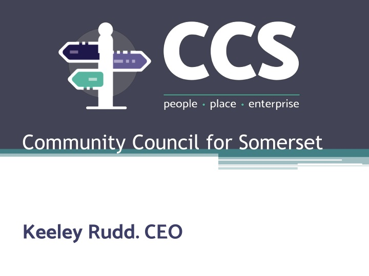community council for somerset n.
