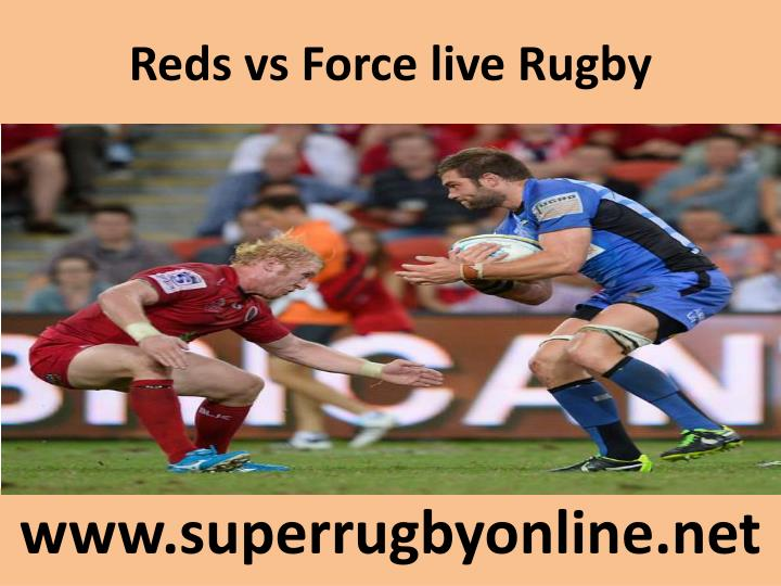 reds vs force live rugby n.