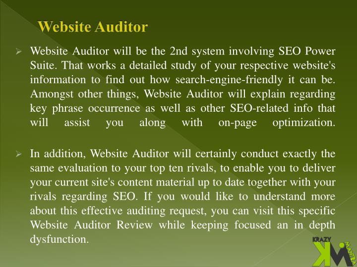 Website Auditor