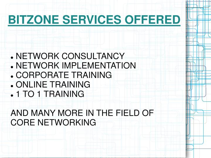 Bitzone services offered