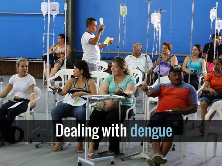 Dealing with dengue