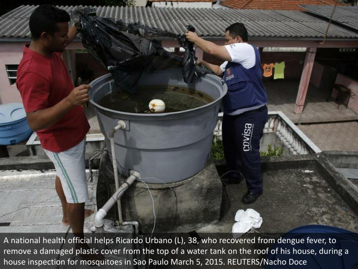 A national health official helps Ricardo Urbano (L), 38, who recovered from dengue fever, to remove a damaged plastic cover from the top of a water tank on the roof of his house, during a house inspection for mosquitoes in Sao Paulo March 5, 2015. REUTERS/Nacho Doce