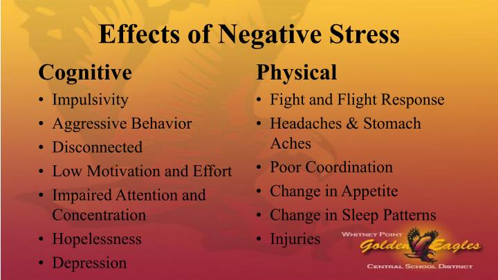 Effects of Negative Stress