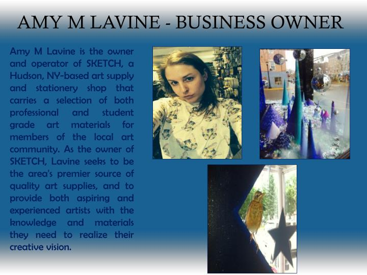 amy m lavine business owner n.