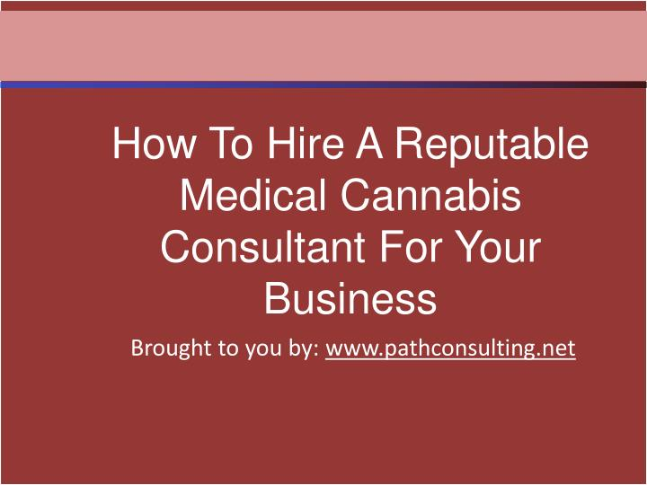 How To Hire A Reputable Medical Cannabis Consultant For Your Business