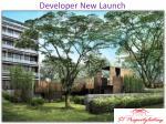 developer new launch