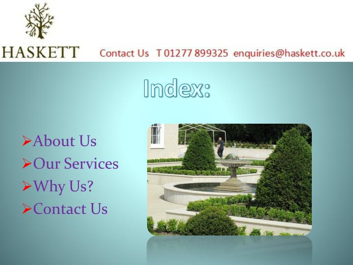 PPT - Modern Garden Design by Landscape Gardeners in Essex ...